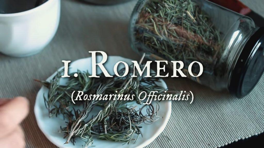 Romero para el cuidado facial con plantas medicinales