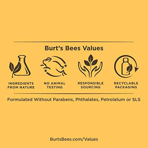 Burts Bees, Pintalabios - 1 unidad