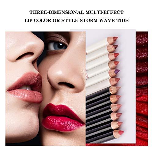 OLesley 12 piezas / juego Delineador de labios De lujo Lápices delineador de labios / delineador de ojos mate fácil de cargar 24 horas duradero impermeable Lápiz delineador de labios (A)
